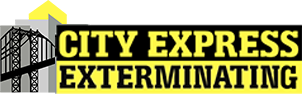 City Express Exterminating Logo